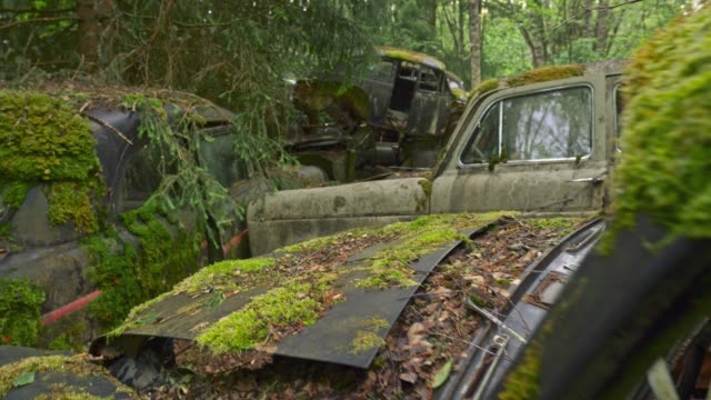 Old abandoned cars are covered with filth, rust and green moss. Steadicam shot, 4K