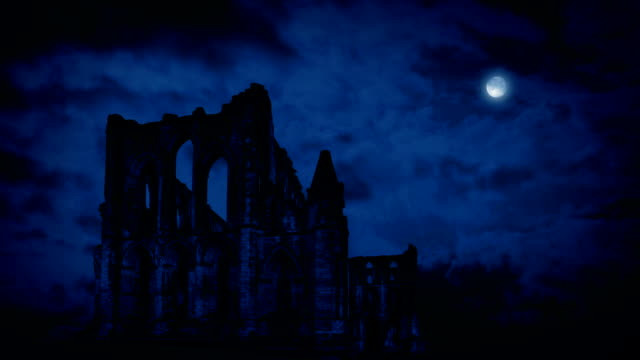 Old Abbey Ruins At Night video