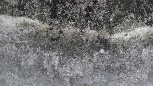 old and dirty cement wall background - pietra roccia video stock e b–roll