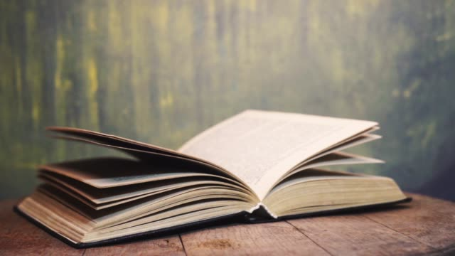 Old Book pages macro view. Beautiful background. Old Book pages macro view. Beautiful background. open book stock videos & royalty-free footage