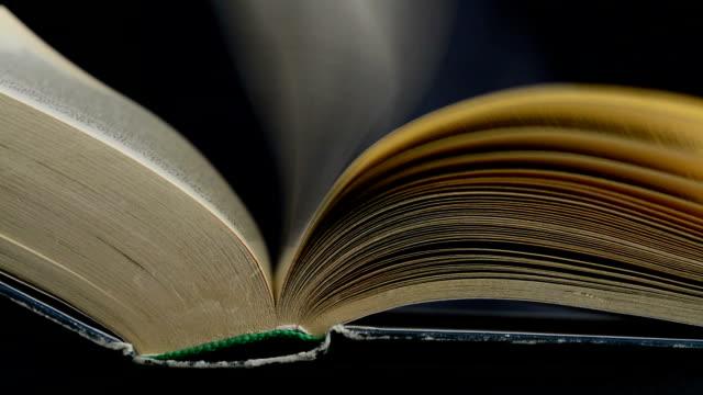 stockvideo's en b-roll-footage met oude boeken-pagina's draaien in de wind - literatuur