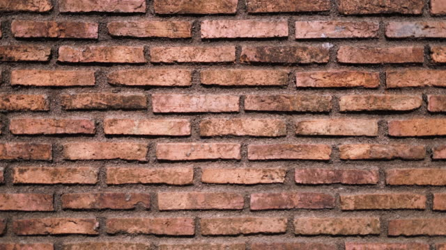 Old Brick Wall Background Dolly Shot
