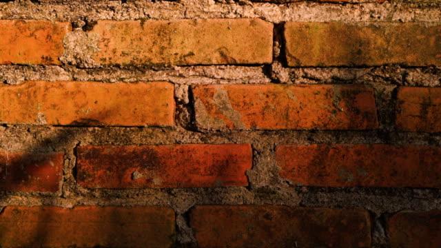 Old Brick Wall In Shadow Tilt Shot