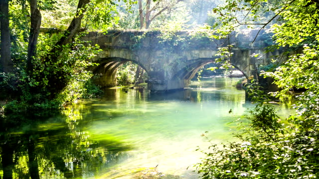 Old Bridge In Green Forest With Flowing River video