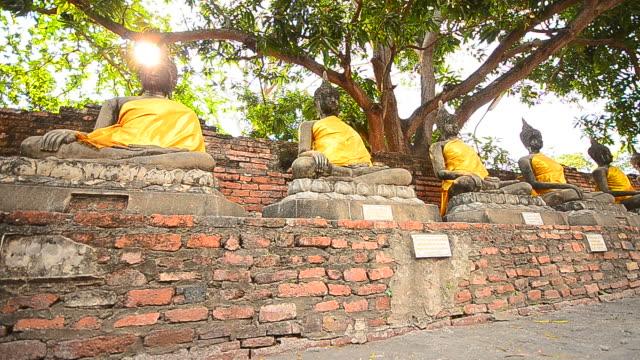 Old Buddha Statues at Historical Park of Ayutthaya, Thailand video