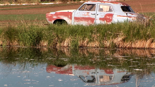 Old car by the pond video