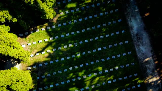 vidéos et rushes de vieux cimetière dans un parc (antenne) - première guerre mondiale