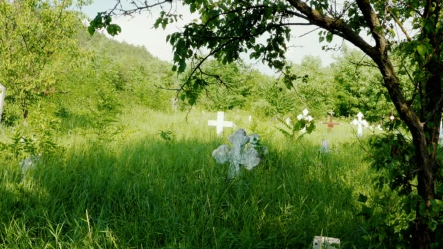 Old cemetry graveyard with stone white crosses overgrown with green meadow