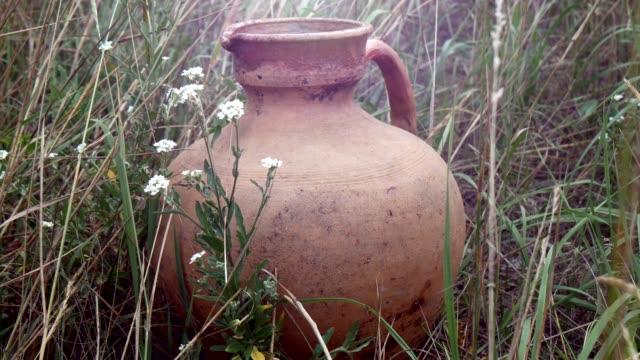 vidéos et rushes de vieille crute d'argile en céramique dans l'herbe avec des fleurs sauvages - picto urne