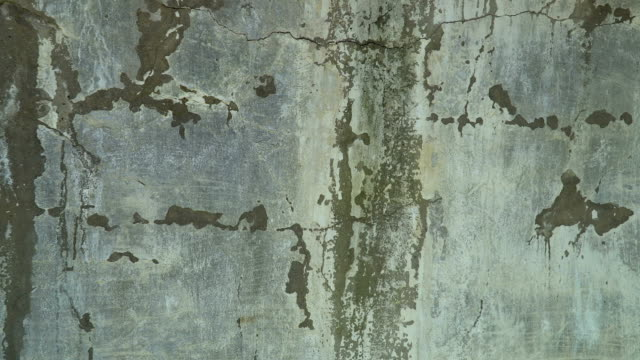 old cracked wall background grunge texture video
