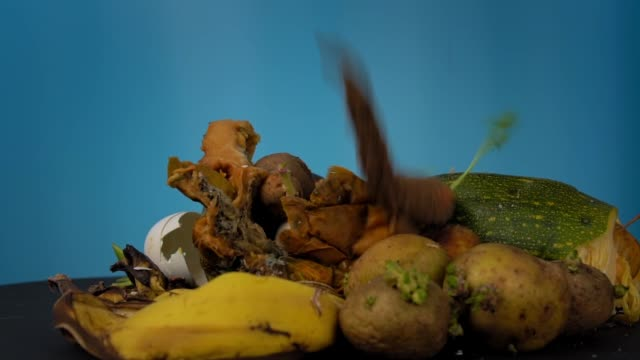 Old dried carrots slowly fall on rotten vegetables and fruits. video