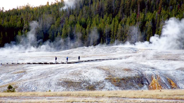 stockvideo's en b-roll-footage met oude faidful in yellowstone, 4 k-oplossing - yellowstone national park