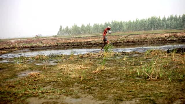 Old farmer walking in the field video