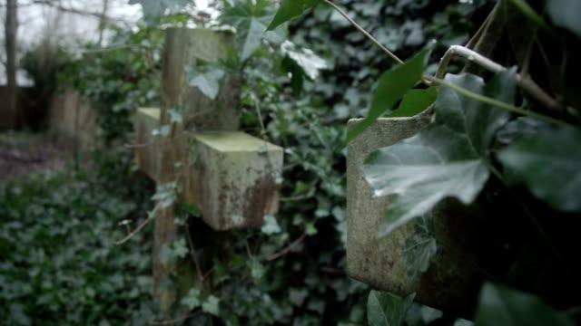 Old Forgotten Graveyard video