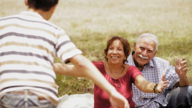 old grandpa grandmother doing picnic with grandson slow motion - dziadek i babcia filmów i materiałów b-roll