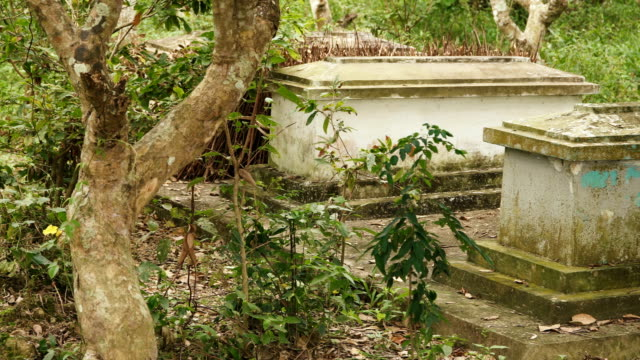Old graves in the garden Old graves in the middle of a fruit plantation. Vietnamese bury their relatives at place they lived and worked all their lives. southeast stock videos & royalty-free footage