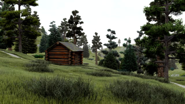 Old log cabin at fairytale fir forest