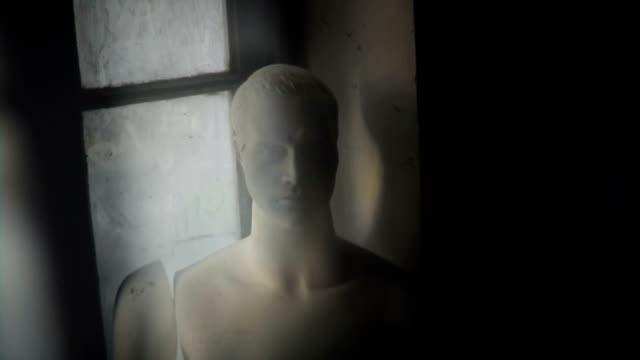 Old Male Mannequin video