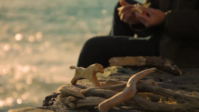 old man carving wood sculptures at seaside during sunset