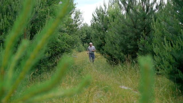 gammal man jogga utomhus i en barrskog natur - tävlingsdistans bildbanksvideor och videomaterial från bakom kulisserna
