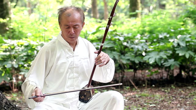 Image result for old man chinese playing instrument