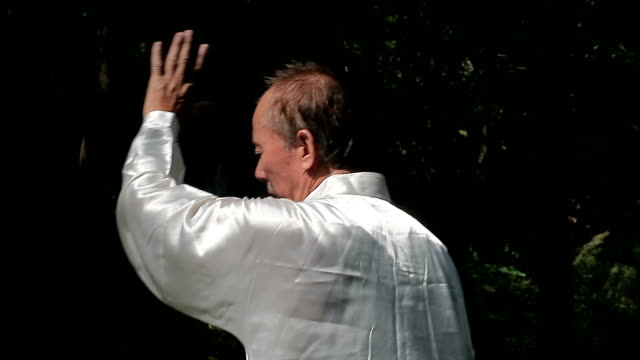 old man practice tai chi in the park video