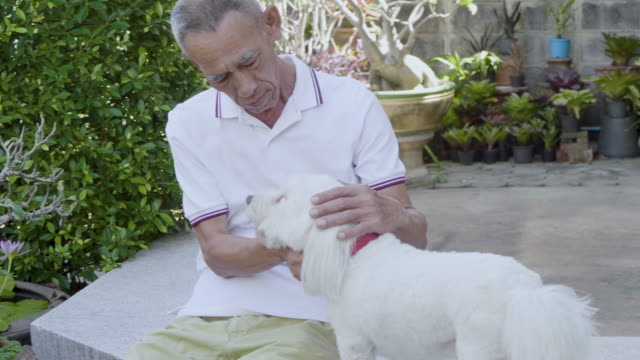 old man using smartphone at home with Dog video