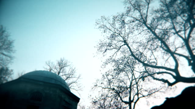 Old muslim tomb and moody trees, camera turning right, lens softness on corners and grain video