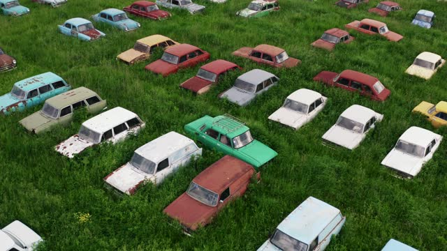 Old rusty abandoned retro cars in green meadow, aerial view from drone video