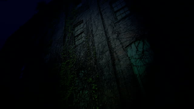 Old scary building at night video