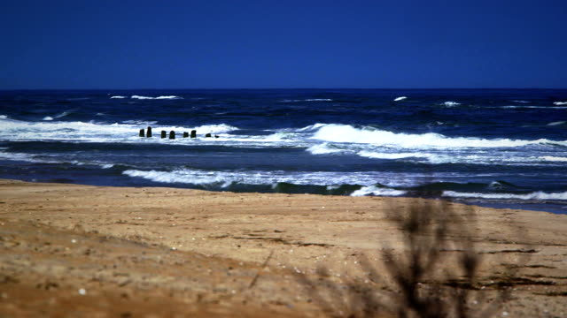 Old Shipwreck on North Carolina Beach video