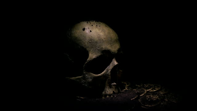 Old Skull And Coins Dug Up Under Soil Somebody digs through the earth and finds an old pirate skull and treasure knight person stock videos & royalty-free footage