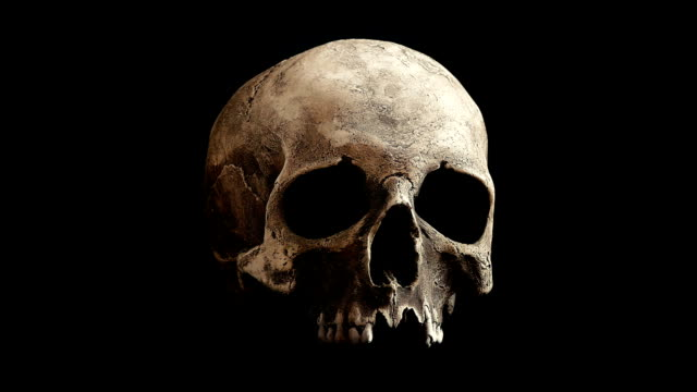 Old Skull Rotating Slowly Loop Old human skull turning slowly on black background - Looped for endless playback skull stock videos & royalty-free footage