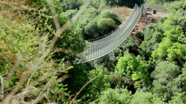 Old suspension bridge in the forest. Long shot Old suspension bridge in the forest. Long shot suspension bridge stock videos & royalty-free footage