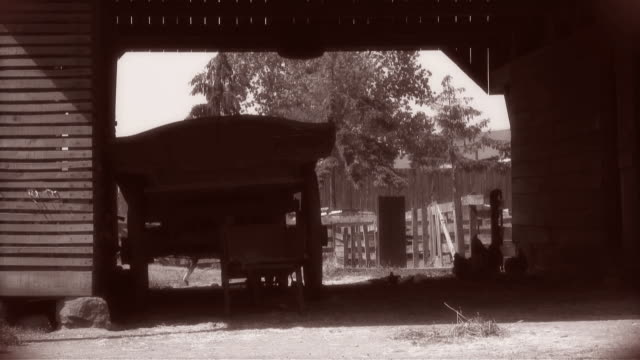Old Time Barn Chickens silhouetted in a barn scene treated with tinting, strobing effects and some vignetting to resemble old film footage. sepia toned stock videos & royalty-free footage