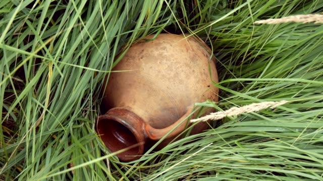 vidéos et rushes de vieux pichet en céramique traditionnel dans l'herbe - picto urne
