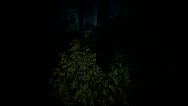 alten wasserturm in der nacht unter dem dickicht - baumgruppe stock-videos und b-roll-filmmaterial