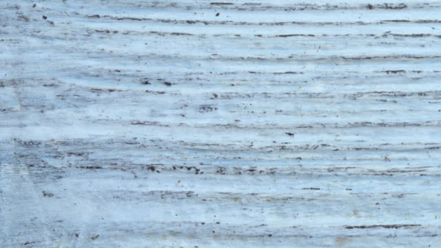 Old white wood pattern Old white textured painted wood seamless pattern. Close-up wood texture stock videos & royalty-free footage
