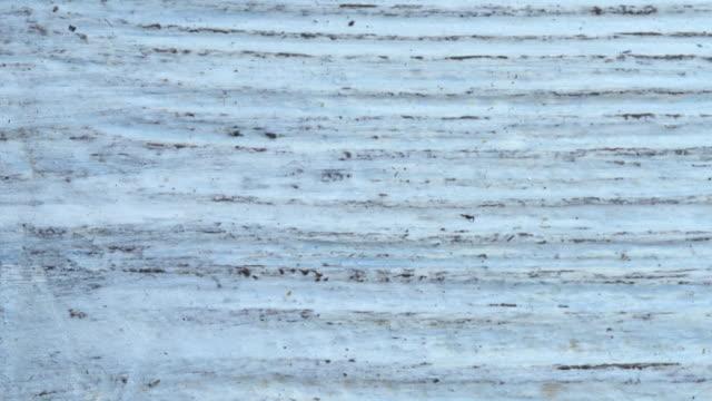 vidéos et rushes de ancien motif bois blanc - bois texture