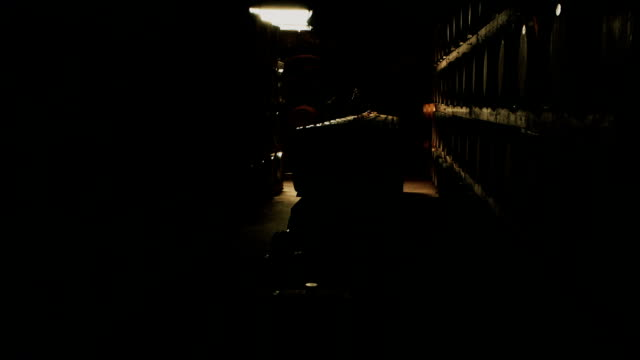 Old wine barrels in the vault of winery video