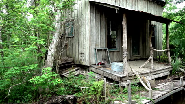 old wooden hut in the swamp area of louisiana - болото стоковые видео и кадры b-roll