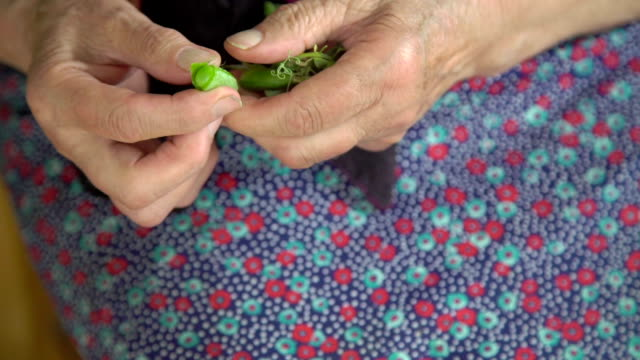 Old wrinkled hands shelling green peas in the village video