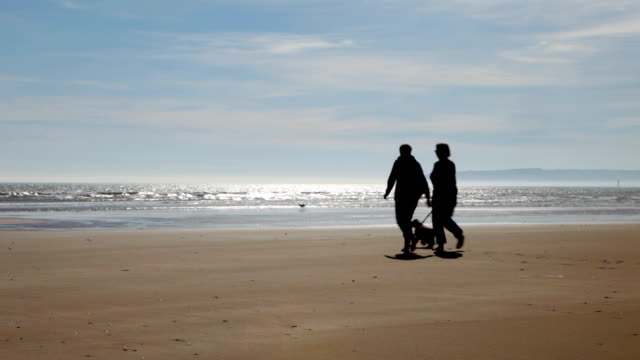 Older couple on beach in silhouette video