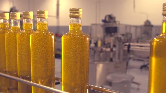 stockvideo's en b-roll-footage met productie van olijfolie - olijf
