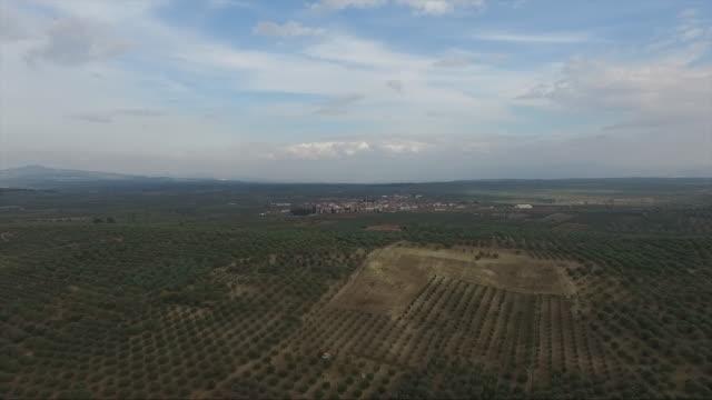 vidéos et rushes de bourdon olivier - olivier