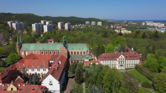 Oliwa park in Sopot Aerial: Oliwa park in Sopot, Poland gdansk stock videos & royalty-free footage