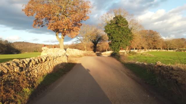 on the way of countryside of Alberobello, Puglia, Italy