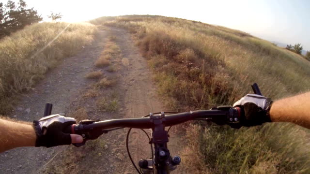 Onboard camera: Cyclist riding mountain bike at sunrise video
