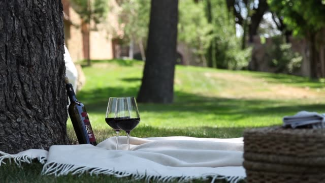one bottle of red wine with two glasses and people walking in a park - video