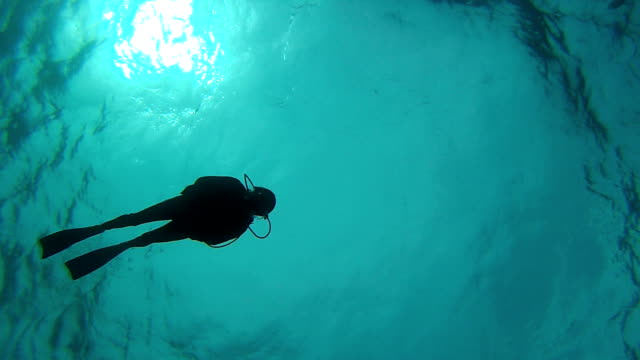 One Diver Lonely diver backlight scuba diving stock videos & royalty-free footage